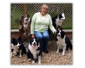 sue with all dogs