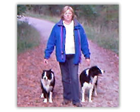 sue walking the dogs